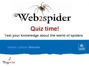 Quiz time True or False 1 Spiders belong