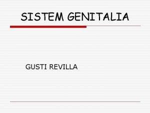 SISTEM GENITALIA GUSTI REVILLA PELVIS o o TDD