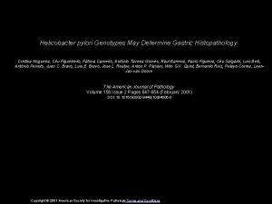 Helicobacter pylori Genotypes May Determine Gastric Histopathology Cristina