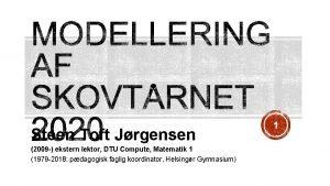 Steen Toft Jrgensen 2009 ekstern lektor DTU Compute