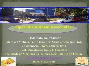 Hiperbilirrubinemia Neonatal Internato em Pediatria Internas Nathlia Freire