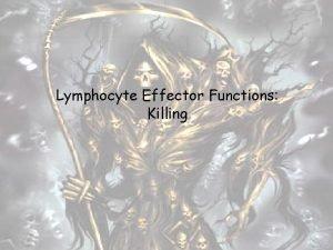Lymphocyte Effector Functions Killing Major Lymphocyte Subpopulations in