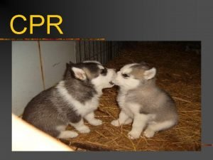 CPR Definition n Cardiopulmonary Resuscitation n Cardio heart
