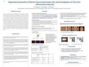 Abstract Exploratory Generation of Murine mesenchymal Stem cells