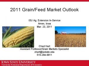 2011 GrainFeed Market Outlook ISU Ag Extension InService