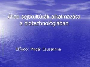 llati sejtkultrk alkalmazsa a biotechnolgiban Elad Madr Zsuzsanna