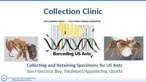 Collection Clinic Collecting and Retaining Specimens for US