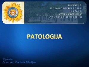 Pripremio Dr sci vet Vladimir Mladjan Patologija uvod