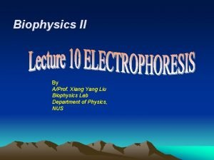 Biophysics II By AProf Xiang Yang Liu Biophysics