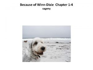 Because of WinnDixie Chapter 1 4 sageny BECAUSE