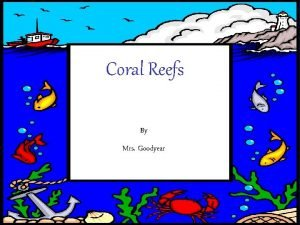 Coral Reefs By By Mrs Goodyear What is