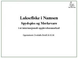 Firma Albert Collett Laksefiske i Namsen Spydspiss og