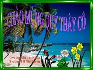 GV Nguyn Th Ngha Trng TH Gio Phong