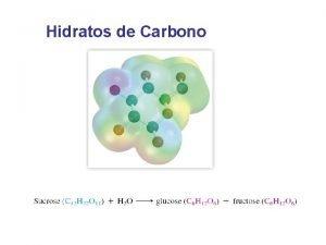 Hidratos de Carbono Mandioca planta alimenticia Mostaza y