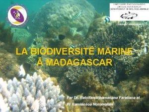 Latimeria chalumnae LA BIODIVERSIT MARINE MADAGASCAR Par Dr
