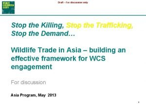 Draft For discussion only Stop the Killing Stop