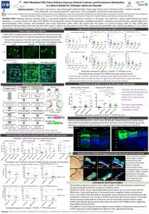 r AAVMediated PEX 1 Gene Delivery Improves Retinal