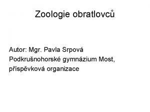 Zoologie obratlovc Autor Mgr Pavla Srpov Podkrunohorsk gymnzium