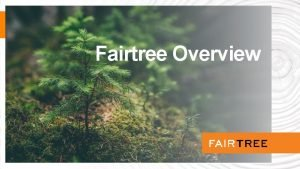 Fairtree Overview Agenda Overview 56 STARTED 2003 2008