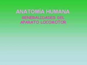 ANATOMA HUMANA GENERALIDADES DEL APARATO LOCOMOTOR GENERALIDADES DEL