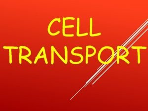CELL TRANSPORT HOMEOSTASIS AND TRANSPORT Homeostasis the stable