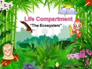 Life Compartment The Ecosystem What is Ecosystem Ecosystem
