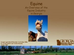 Equine An Overview of the Equine Industry in