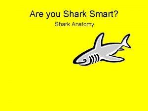 Are you Shark Smart Shark Anatomy Shark Skeleton