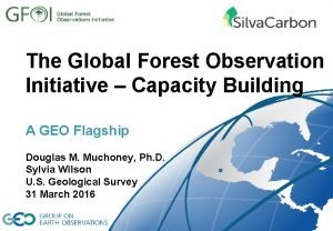 The Global Forest Observation Initiative Capacity Building A