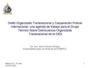 Delito Organizado Transnacional y Cooperacin Policial Internacional una