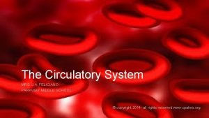 The Circulatory System MRS J A FELICIANO PARKWAY