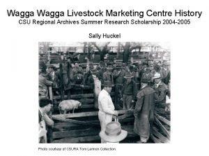 Wagga Livestock Marketing Centre History CSU Regional Archives