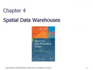 Chapter 4 Spatial Data Warehouses Copyright 2008 Elzbieta