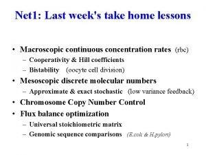 Net 1 Last weeks take home lessons Macroscopic
