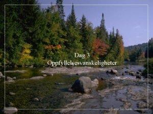 Dag 3 Oppfyllelsesvanskeligheter Lasse Simonsen Del I Risikosprsmlet
