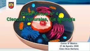 Clase Virtual N 4 Ciencias Naturales Eje Biologa