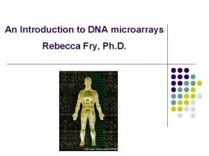 An Introduction to DNA microarrays Rebecca Fry Ph