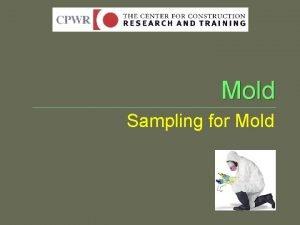 Mold Sampling for Mold Fungal Growth Mold Sampling