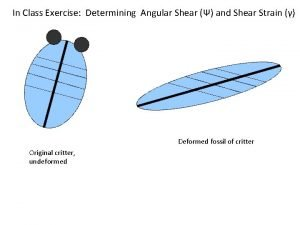 In Class Exercise Determining Angular Shear and Shear