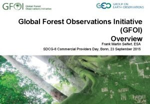 Global Forest Observations Initiative GFOI Overview Frank Martin