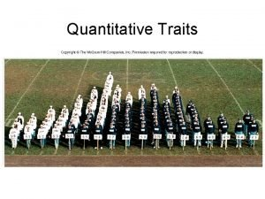 Quantitative Traits Mendelian Genetics of Quantitative Traits Quantitative