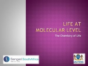 The Chemistry of Life CHEMISTRY OF LIFE Summary