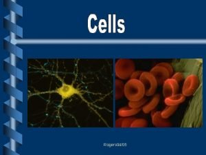 Rogers 0405 Common Cell Traits A cell is