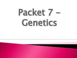 Packet 7 Genetics Word GENE ALLELE HOMOZYGOUS or