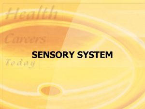 SENSORY SYSTEM Structure and Function Sensory system consists