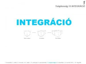 1 Tulajdonsg 13 INTEGRCI Mono rendszer Bi rendszer