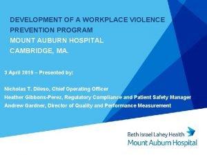 DEVELOPMENT OF A WORKPLACE VIOLENCE PREVENTION PROGRAM MOUNT