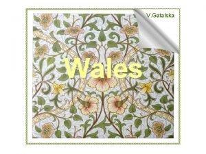 V Gatalska Wales The United Kingdom Wales Area