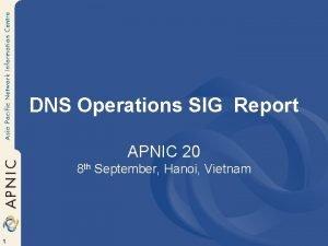 DNS Operations SIG Report APNIC 20 8 th