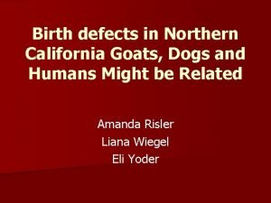 Birth defects in Northern California Goats Dogs and